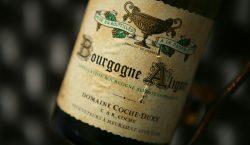 Aligoté, il Proteo della Borgogna