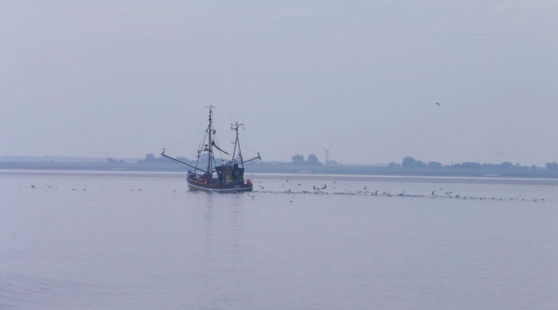 Taccuino tedesco/2 – Sull'isola di Langeoog