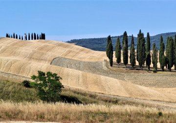 Memorie estive tra la Toscana e la Puglia/1: Val d'Orcia